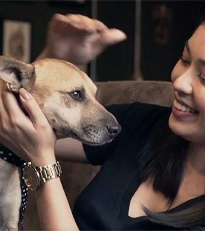 Pet shop propõe forma incrível de se 'livrar' da tatuagem com o nome do ex: começar um novo amor