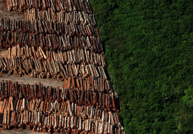 Levantamento mostra que Brasil é o país mais perigoso do mundo para ambientalistas