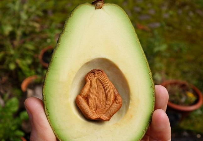 Artista transforma sementes de abacate em criaturas mágicas da floresta