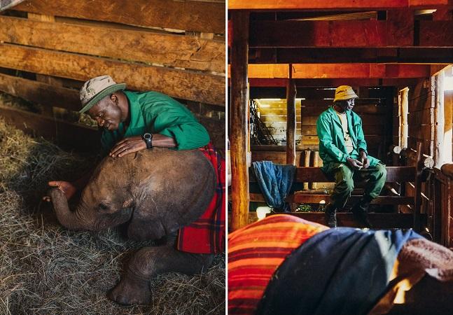 Conheça os homens que passam suas noites sendo babás de bebês elefantes órfãos