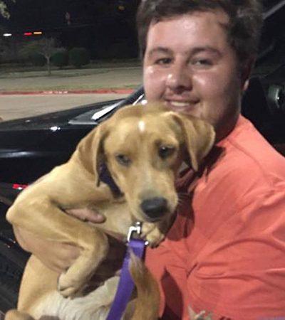Jovem ignora os avisos e enfrenta furacão para salvar dois cachorros deixados para trás
