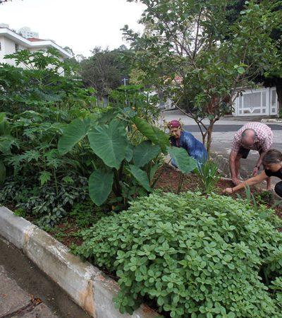Moradores de SP se mobilizam para construir bairro ecológico