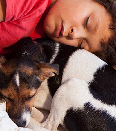 Série fotográfica explora a relação íntima de humanos e seus cachorros enquanto dormem