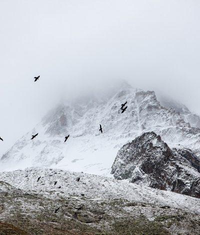 Aquecimento global derrete glaciares nos Alpes e revela corpos mumificados de montanhistas