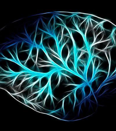 Pesquisadores conseguem restaurar consciência de homem após 15 anos em estado vegetativo