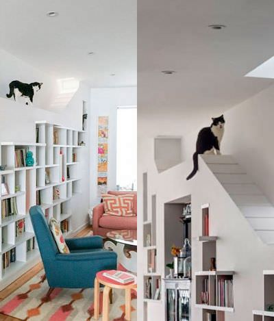 Quero! Casal cria casa perfeita para apaixonados por gatos e livros