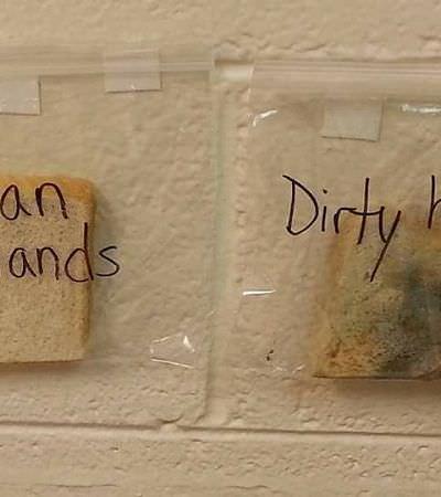 Professora cria experimento certeiro para mostrar para os alunos a importância de lavar as mãos