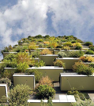 Floresta vertical: Prédio de Paris terá 2 mil plantas, iluminação e ventilação natural