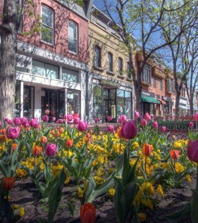 Lista das 25 cidades 'mais felizes' dos EUA está cheia de surpresas e locais desconhecidos