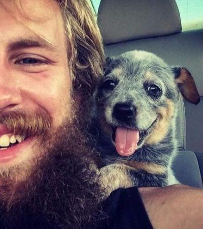 Donos de cães compartilham imagens do primeiro contato que tiveram com seus pets