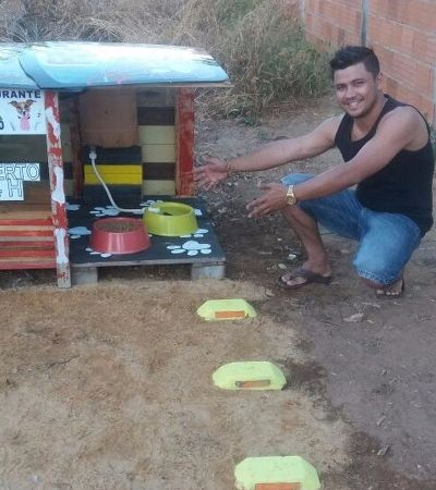 Conheça o Fome Zero, 'restaurante' criado para alimentar cachorros de rua no Tocantins