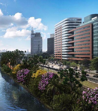 Margens do rio Pinheiros serão reflorestadas com 18 mil árvores nativas