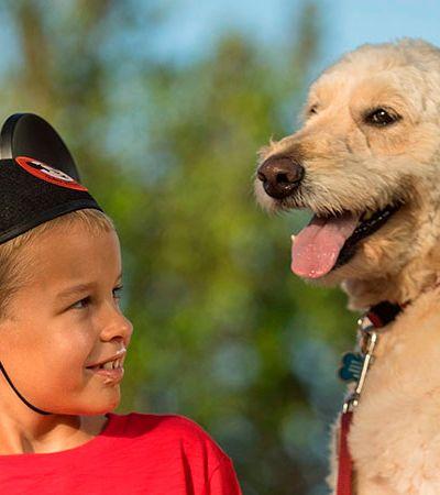 Agora, sim! Hotéis de Walt Disney liberam presença de cães pela primeira vez