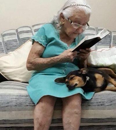 Após vida de maus tratos esta cachorrinha não poderia ter achado uma dona mais dedicada