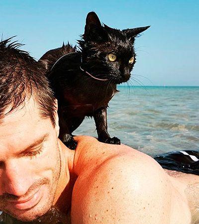 Este é Nathan, o gato que ama o mar e que merece todo nosso respeito