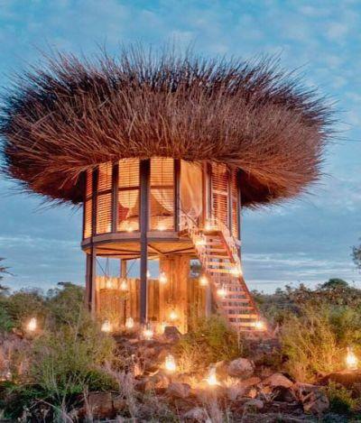 Suíte de luxo simula ninho de pássaros no meio de um safári no Quênia