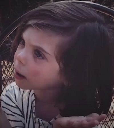 A reação deste garoto ao ir ao zoológico pela primeira vez foi a mais madura possível