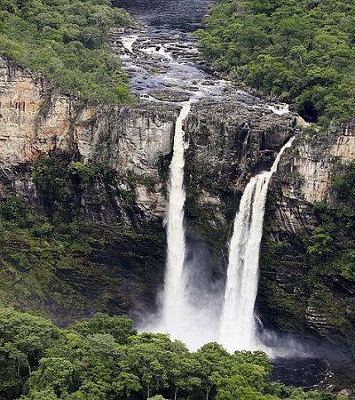Parque Nacional da Chapada Dos Veadeiros floresce após incêndio que consumiu 28% de sua área