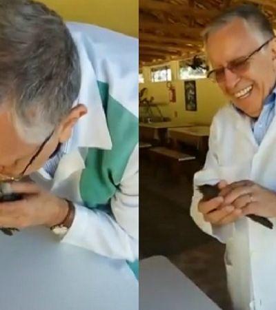 Médico brasileiro faz passarinho voltar à vida após massagem cardíaca