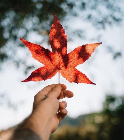 É possível mudar para o Canadá e se tornar cidadão canadense; saiba como