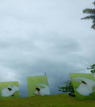 Exposição a céu aberto integra arte à natureza no Rio de Janeiro