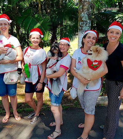 ONG leva cães para visitar idosos em asilo de Santa Catarina
