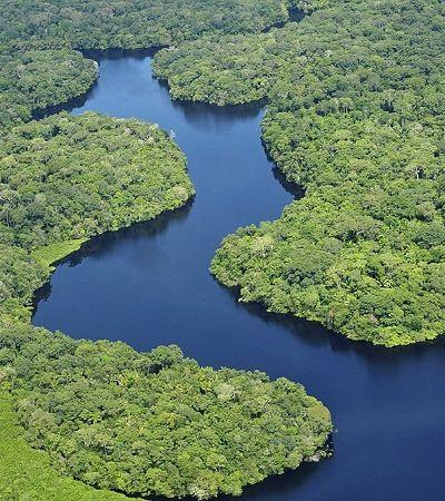 Amazônia vai ganhar unidade de conservação de 3 milhões de hectares