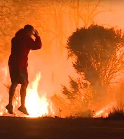 Homem se arrisca no incêndio devastador da Califórnia para salvar coelho preso pelas chamas