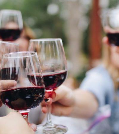 Museu da Casa Brasileira tem feira com degustação de vinhos neste fim de semana