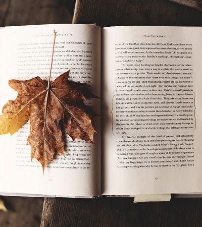 Na Islândia a tradição é trocar livros no Natal