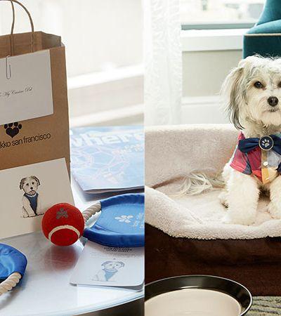Hotel de San Francisco oferece cachorros como companheiros de quarto