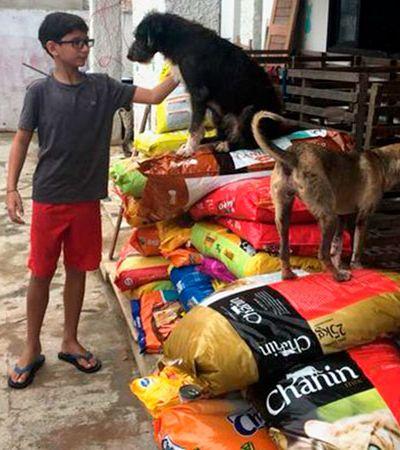 Presente de aniversário? Menino de 12 prefere dar 500 kg de ração para abrigo de animais