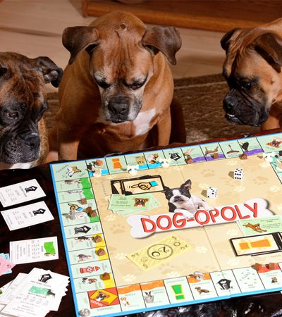 Chegou o Dog-opoly, o Banco Imobiliário para quem ama cachorros
