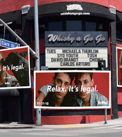 'Relaxa. É legalizado': Loja de maconha na Califórnia mostra como é viver longe do tráfico