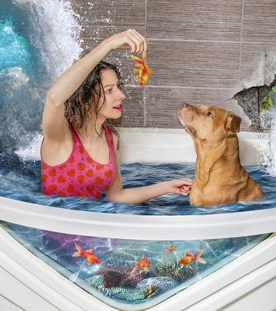 Fotógrafa faz ensaio com cachorros resgatados da rua e mostra nova realidade deles