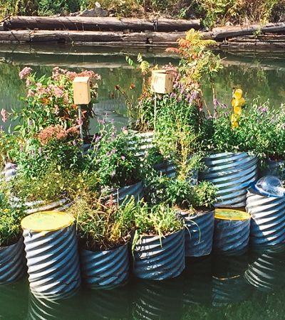 Jardins flutuantes estão transformando Nova York em uma cidade mais verde