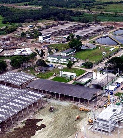 Como vai ser a usina brasileira que vai produzir energia elétrica à base de cocô