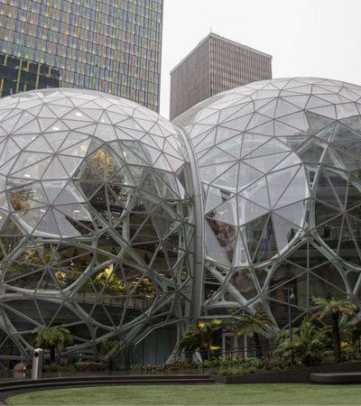 Novo escritório da Amazon em Seattle tem 400 tipos de plantas de 50 países distintos