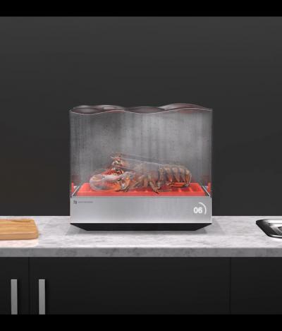 Esta incrível máquina de lavar louça super compacta pode até mesmo cozinhar frutos do mar