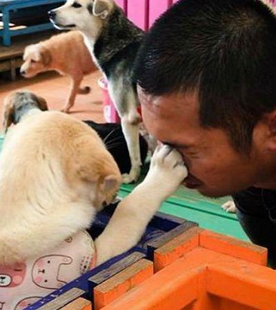 A família que dedica sua vida a cuidar de mais de 3 mil cães abandonados