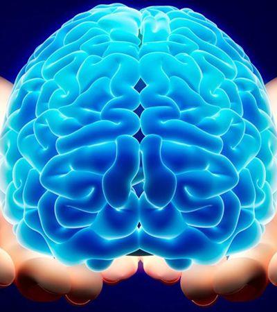 Nova pesquisa responde: o que acontece com o cérebro no exato instante em que morremos?