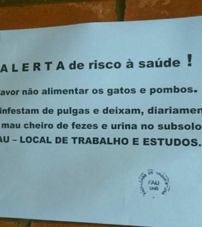 Estudantes denunciam infestação de pulgas na UnB