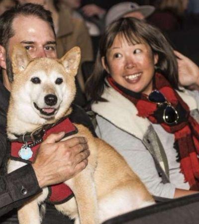 'Isle of Dogs': imagens da plateia peluda nas estreias do novo filme de Wes Anderson