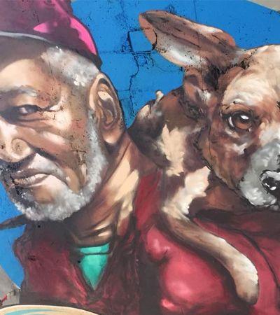 Grafite em teto de viadutos ajuda pessoas em situação de rua com animais a acharem abrigo