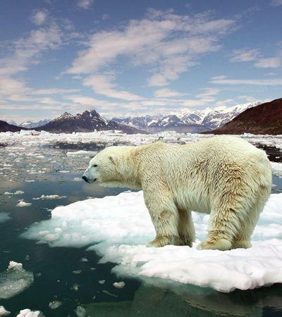 Pesquisa mostra que metade dos norte-americanos não acreditam em aquecimento global