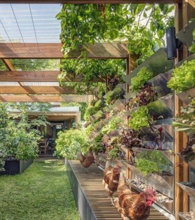Casa autossuficiente produz toda comida e energia necessária para seus habitantes