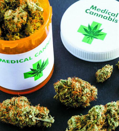 Os estudos levaram em conta a maconha medicinal, mas como ela não era legalizada, os usuários recorreram a ervas não controladas e de pior qualidade