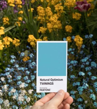 Pantone cria a cor 'otimismo natural' e estamos todos precisando dela