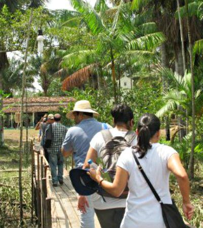 Brasileiros se reúnem no Pará para criar negócios rentáveis que protejam a floresta Amazônica, ao invés de destruí-la