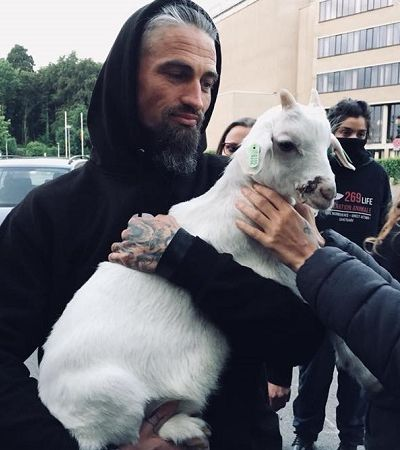 Ativistas franceses invadem matadouro, paralisam operações e resgatam quatro animais